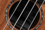 ms60c-soundhole