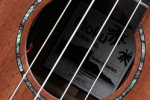 ms60tc-soundhole
