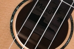 ms90t-soundhole