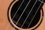 ms90tc-soundhole