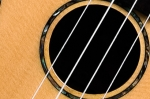 msc80c-soundhole